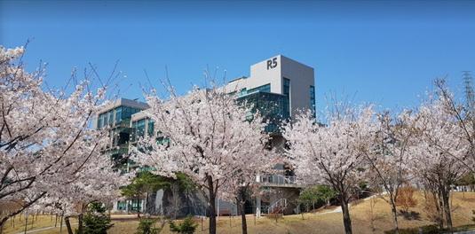 2021 PKNU Online International Summer School, South Korea